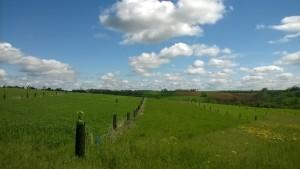 Incontro con Jack De Lozzo, agricoltore agroforestale a Noilhan (Gers) - Francia