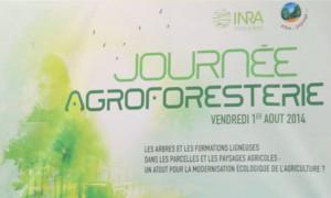 L'agroforesterie à l'INRA